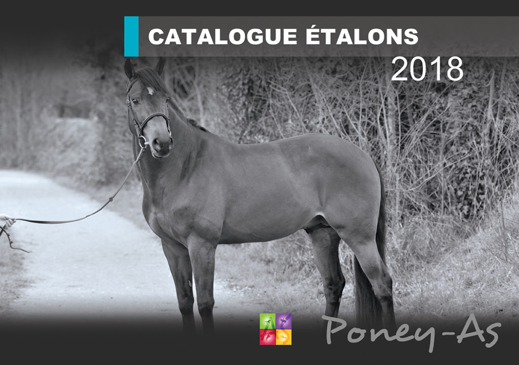 Catalogue Etalons Poney As 2018